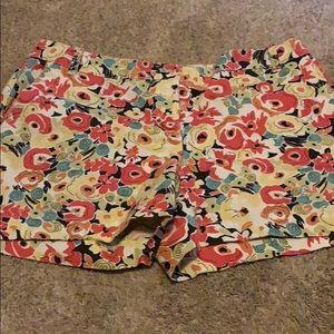 Loft shorts (size 8)